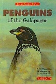 Penguins of the Galapagos by Carol Amato (like new paperback)