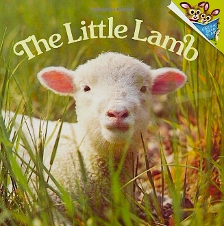 The Little Lamb (new paperback) by Judy and Phoebe Dunn